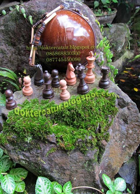 http://doktercatur.blogspot.com mini chess pieces ( rosewood - manilkara wood ) with small bag from coconut shell
