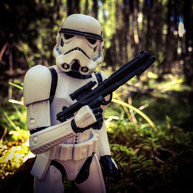 The backbone of the Empire, the #stormtrooper #starwarsblackseries #starwars…