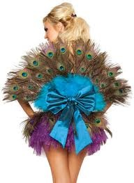 Peacock tail with a bow