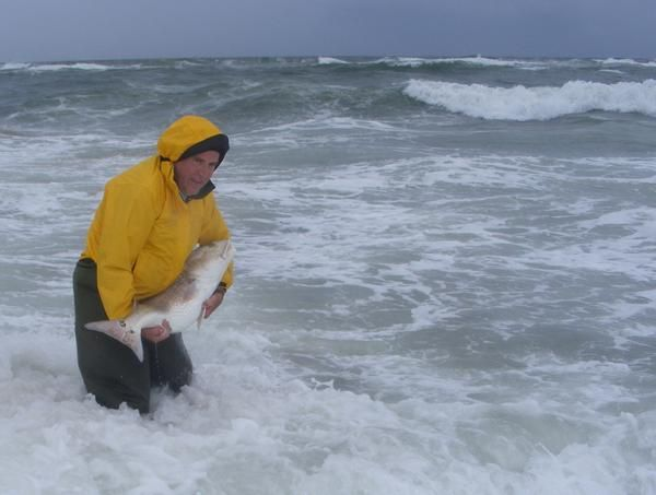 47 best outer banks fishing images on pinterest fishing for Surf fishing outer banks