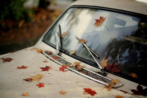 AutumnFall Leaves, Inspiration, Autumn Leaves, Fall Time, Favorite Seasons, Old Cars, Fallen Leaves, Photography, Fall Editing