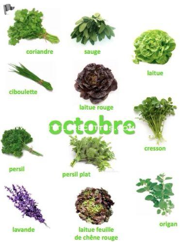 Produits de saison, octobre, fruits, légumes, fromages, poissons