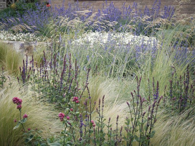 Coastal Garden Design coastal gardens coastal locations are tough on any plant with usually higher wind and salt considerations therefore plants in these locations need to be A Coastal Garden With Limey Soil And Rabbits Quercus Landart We Believe