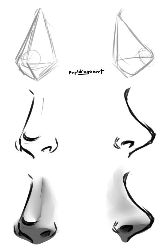Nose Drawing Tutorial By Prpldragon On Deviantart Heads Faces In