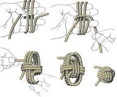 SISL - Noeuds - Pomme de touline