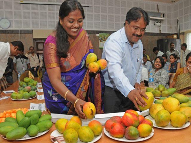 Image result for दिल्ली हाट में मैंगो फेस्टिवल का आगाज