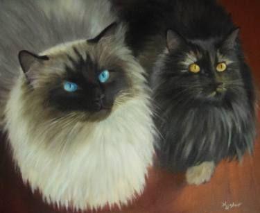 Morfeas & Selini