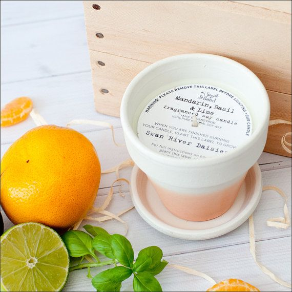 Soy and Seed candles - once you have burnt the candle you can plant the label! Brilliant!