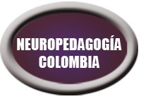 Neuropedagogy Colombie