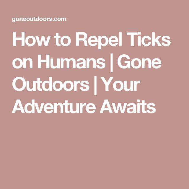 How to Repel Ticks on Humans | Gone Outdoors | Your Adventure Awaits