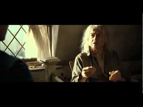 Harry Potter Deathly Hallow's Part 2 - Mr Olivander Checking The Wand's