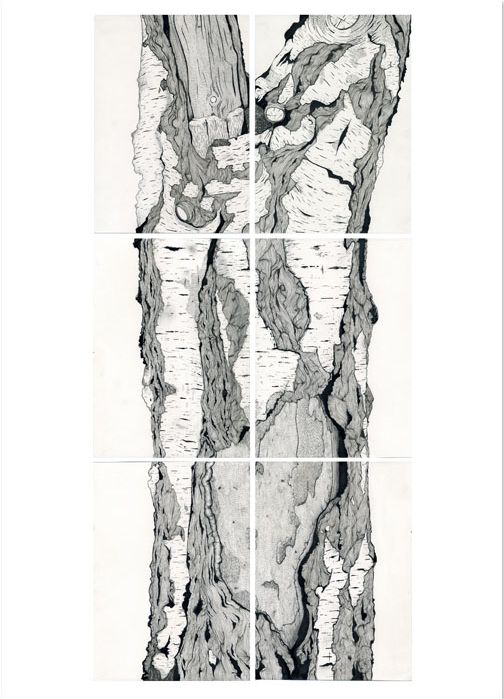 Claire Scully - Silver Birch tree http://www.thequietrevolution.co.uk/