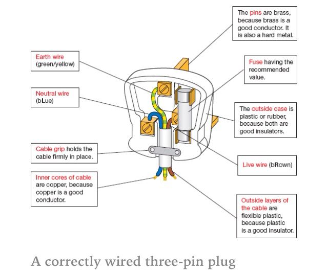 labelled diagram of plug