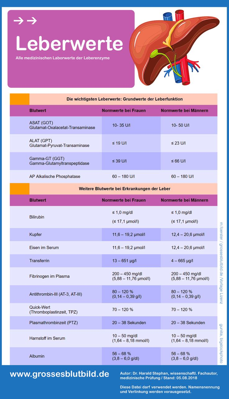 All important laboratory values of the liver important