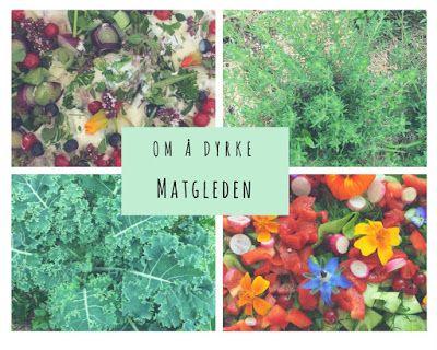 Grønn Matglede