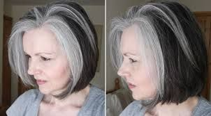 Image result for gray highlights and lowlights