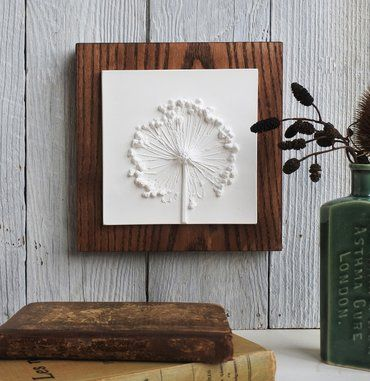 plaster cast of Allium seed head mounted on wood backingPicture