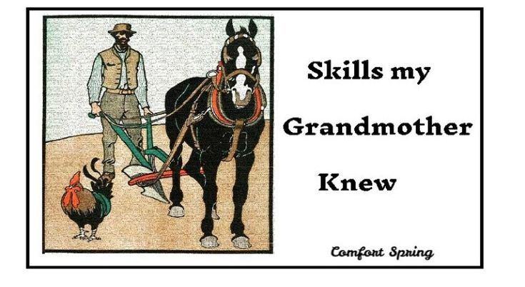 Skills My Grandmother Knew | Comfort Spring