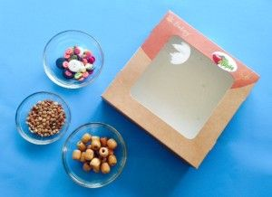 Ocean Drum From A Pie Box!  Awesomely easy and fun music craft for kids, plus a video of a real ocean drum.