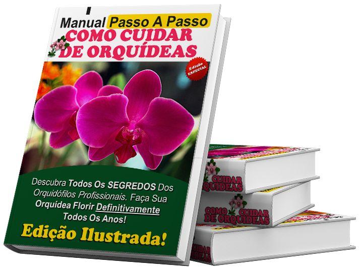 Orquídeas ! Aprenda com Quem sabe ! Click na imagem e acesse todas informações…