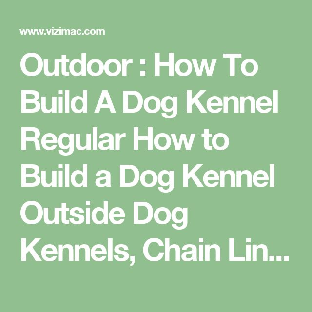 how to get a dog to use a kennel
