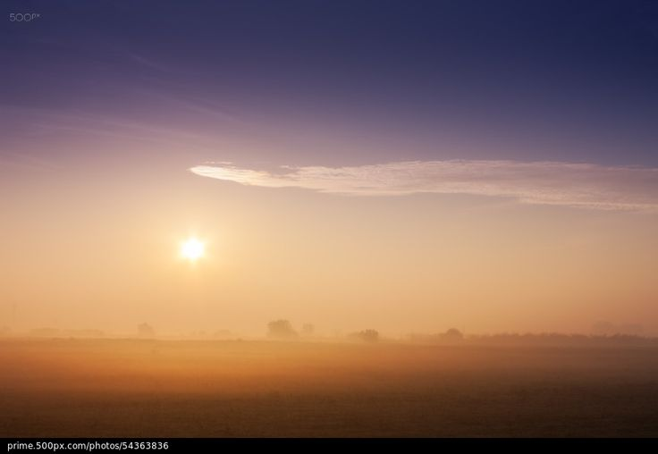 Morning with Fog - stock photo