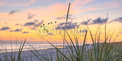 Sonnenuntergang Fototapete günstig kaufen | Fototapeten | Bildtapete | Wandtapete | Vliestapete