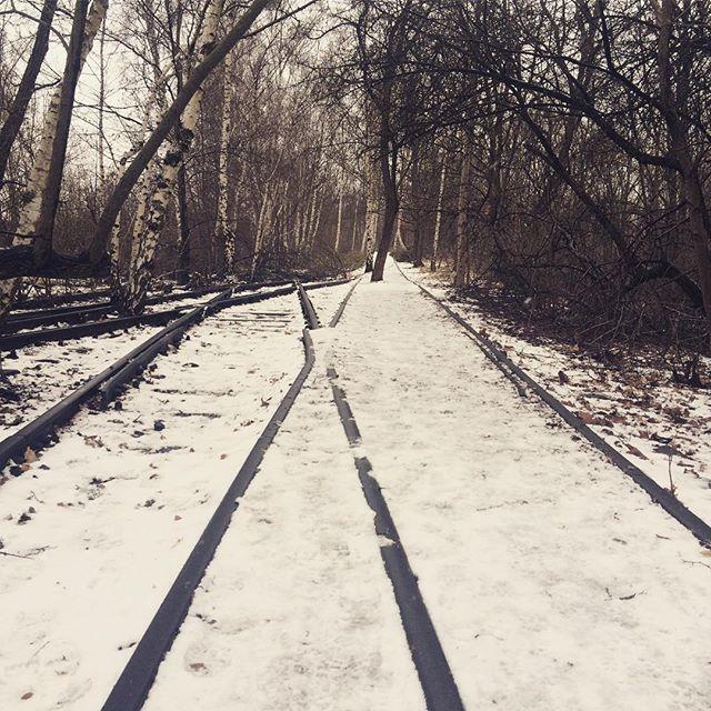 Zwei Wege werden zu einem. Oder doch nicht? Auf den still gelegten Gleisen des Schöneberger Südgelände wachsen schon Bäume. ❄️🌲❄️ #Ausflug #ohneAuto #zug #bahn #gleise #schienen #park #natur #draußen #slowtravel #lostplaces #naturegram #travelgram #instatravel #snow #winter #winterwonderland #trees #treegram #traingram #berlin #brandenburg #berlinstagram #naturelovers #hiking #hikingadventure #sonntagsspaziergang #dienstag #picoftheday