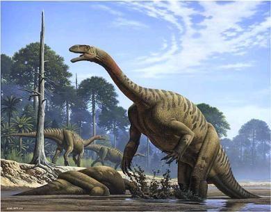 Gigadino - Les dinosaures carnivores