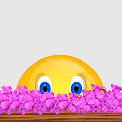 Smiley – Blumen
