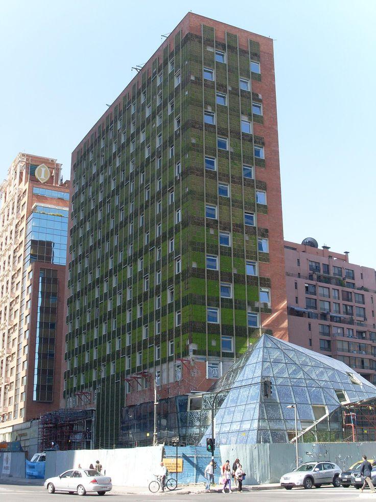Green walls #greenwall #livingwall