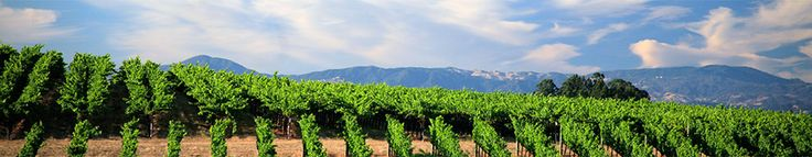 Visa Signature Sonoma Wineries- which ones participate and offer specials.
