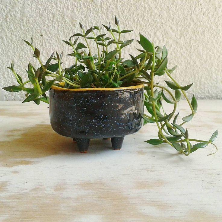 """""""Que martes tan lindo, y mas cuando te envian estas fotos llenas de verde :-D #planter #suculent #black #sparkles #ceramics #slipcast  Foto @tallerbasico"""""""