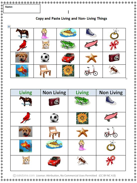 living things versus nonliving things Living and non-living: goldfish vsstudents compare a gold fish cracker and a real gold fish to discover more differences between living and non living things find this pin and more on school stuff by lyndsey serrano.