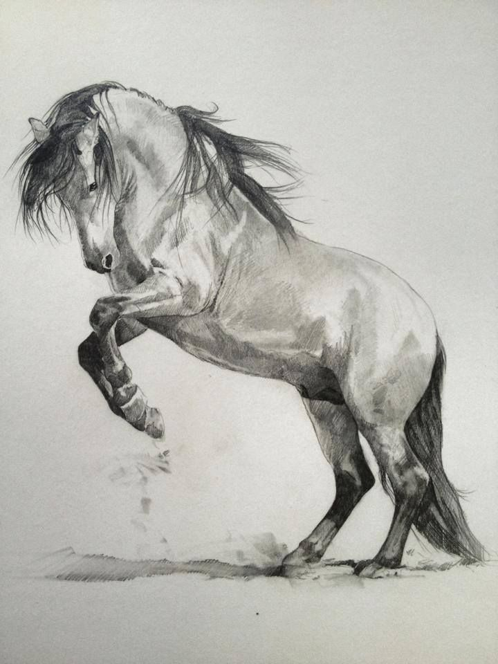Pop-Up Art Lesson with Tony O'Connor 1/6: Think this concept sketch could work well in a portrait style canvas whitetreestudio.ie