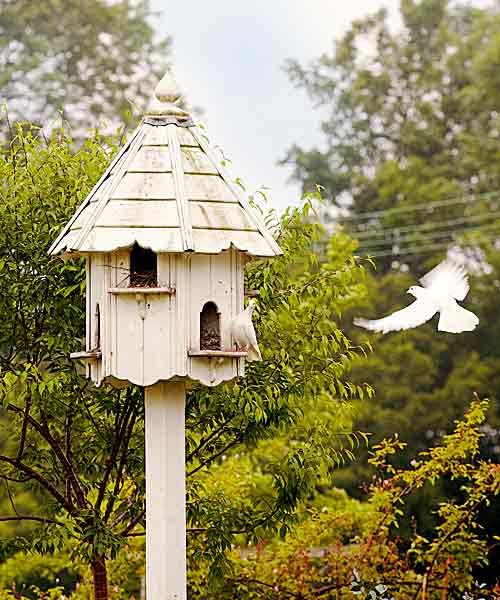 big birdhouse - Big Bird House Plans