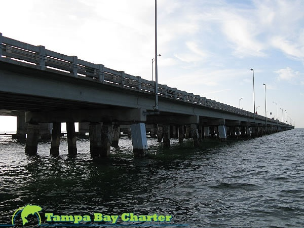 13 best where to next florida summer fun images on for Sunshine skyway fishing pier