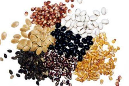 Многие семена прорастут только после стратификации