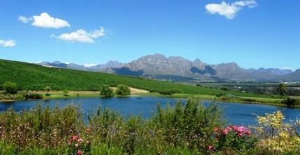 Breathtaking scenery of Stellenbosch