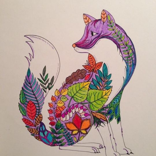 167 Best Images About Coloring Pages By Johanna Basford On