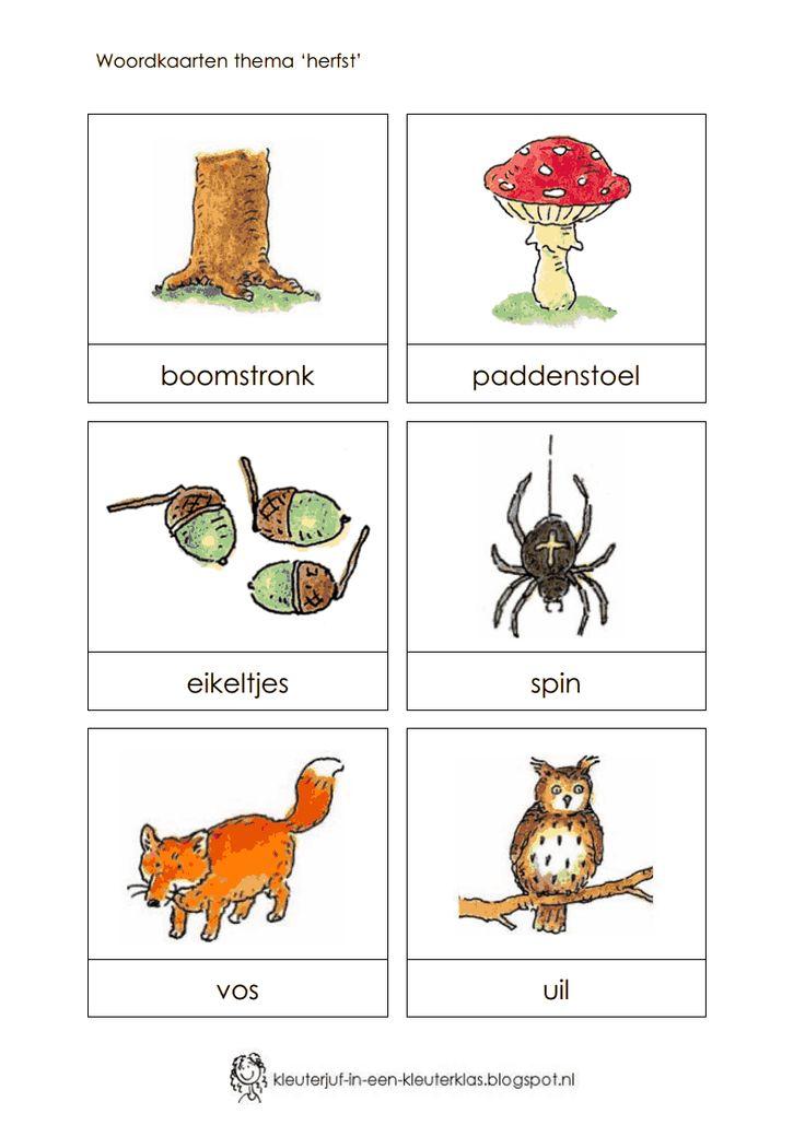 Woordkaarten thema 'Herfst' (Dagmar Stam).pdf