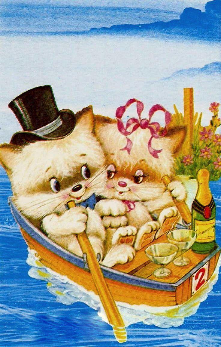 <3 Katzen <3