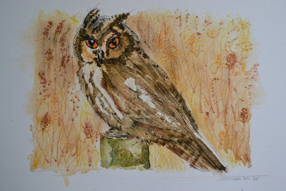 Long Eared Owl. Ltd Edition Fine Art Print by sarahNetLtd on Etsy