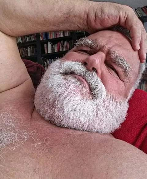 Older bear gets facial