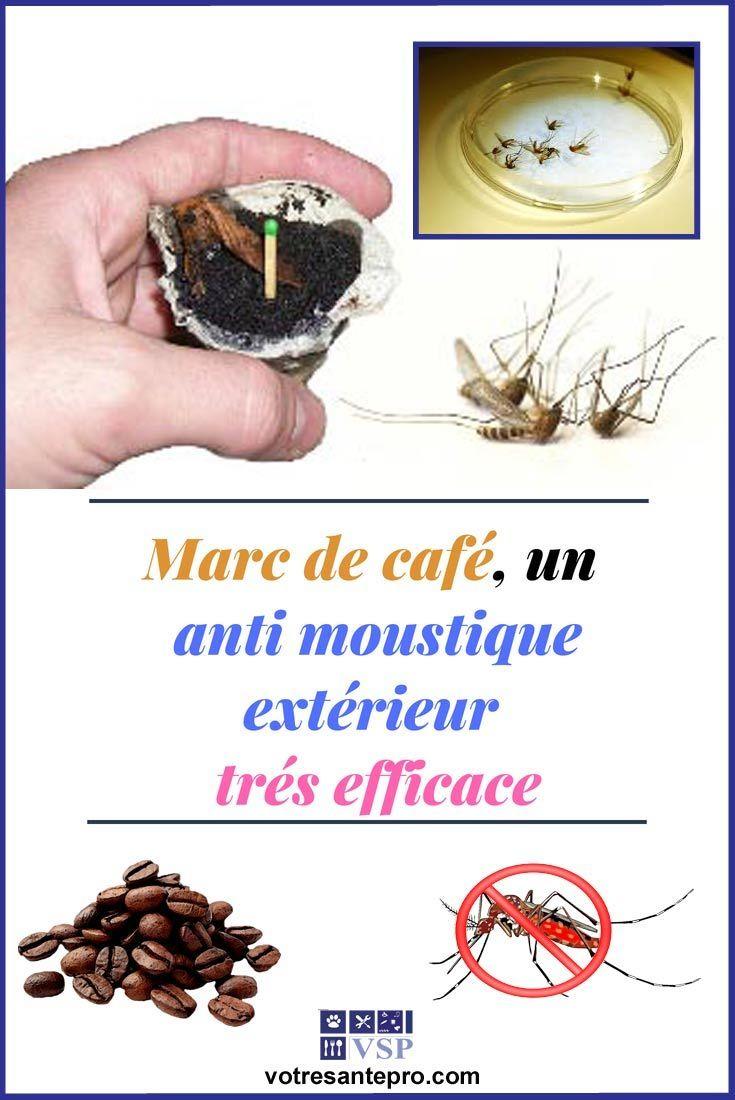Comment Éloigner Les Mouches À L Extérieur marc de café, un anti moustique extérieur efficace | anti
