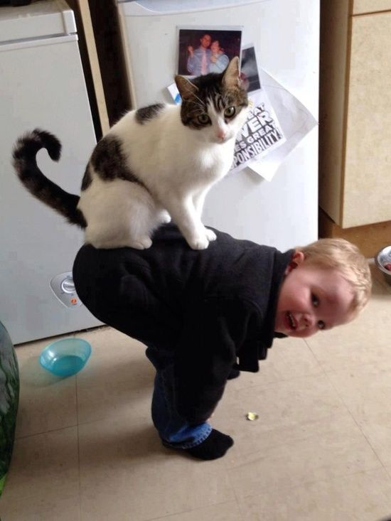 Awwww! The cat, not the baby...lol