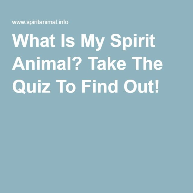 What Is My Spirit Animal? Take The Quiz To Find Out!