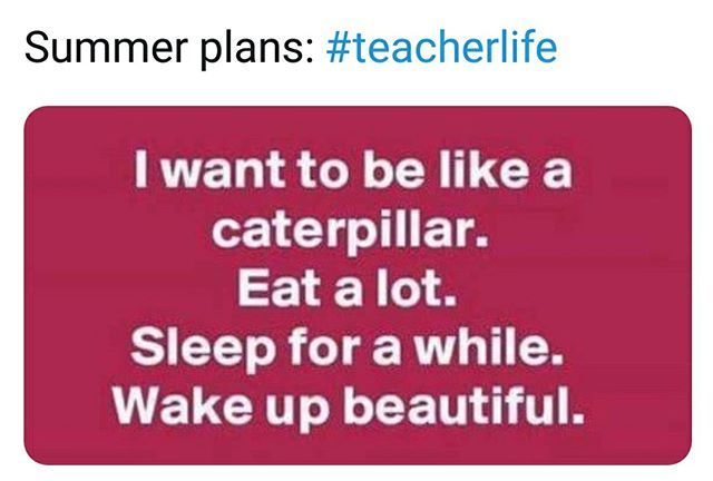OK the caterpillar is formally my summer time break spirit animal.  (through @Teachergo…