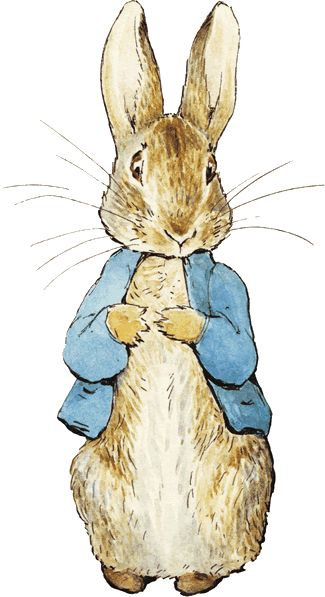 Peter-Rabbit would make a great graphic for a toddler's card!