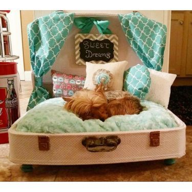 suitcase dog bed - Google Search